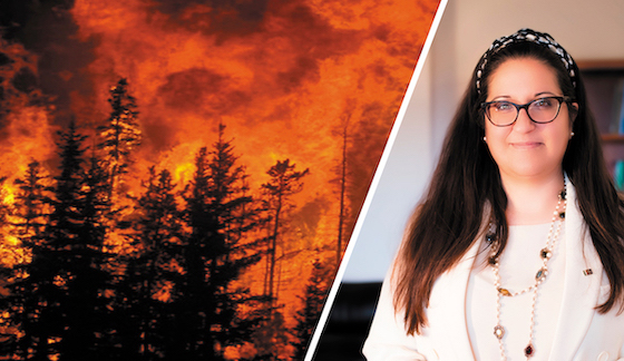 dl_incendi_fontana