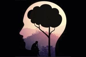 beneficios-mindfulness-Comunidad-mindfulness-chile-latinoamerica