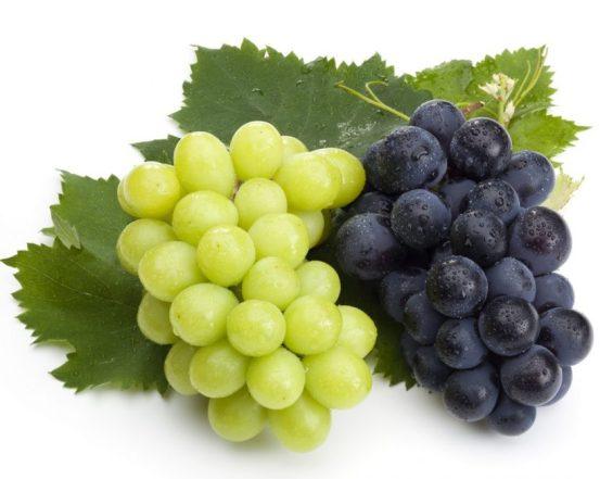 fructele vedeta ale toamnei: strugurii