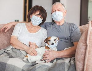 Elderly couple and dog in medical masks during the Coronavirus pandemic