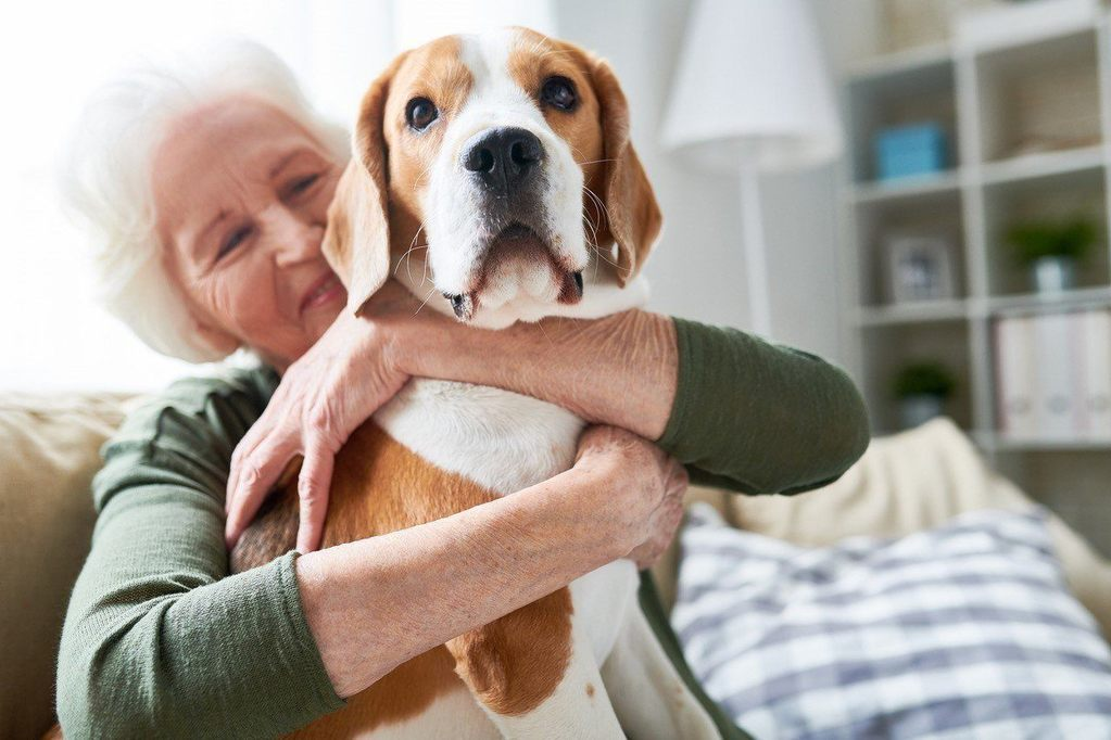 A happy elderly woman hugging her dog