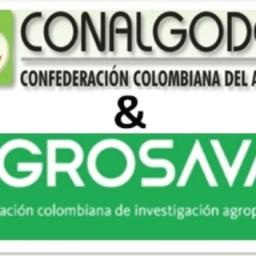 ENCUENTRO DE CONALGODÓN Y AGROSAVIA PARA ESTABLECER DISPONIBILIDAD DE NUEVOS MATERIALES