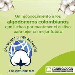 DÍA MUNDIAL DEL ALGODÓN- 7 OCTUBRE DE 2020