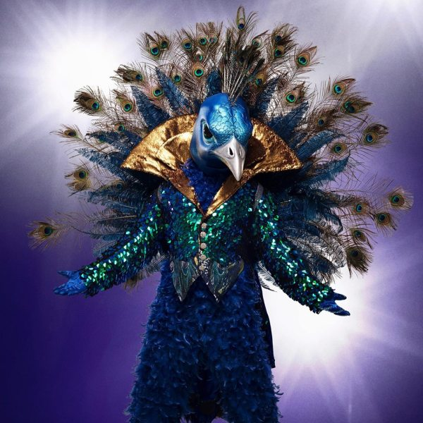 The Masked Singer guesses The Peacock is Donny Osmond Cory Feldman or David Hasselhoff