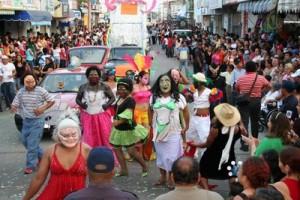 Carnaval Paraíso 2013 (3)