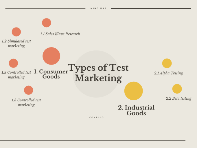 Types of Test Marketing-Flow chart
