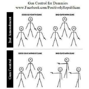 Pro 2nd Amendment Cartoons, Memes And Other Images That