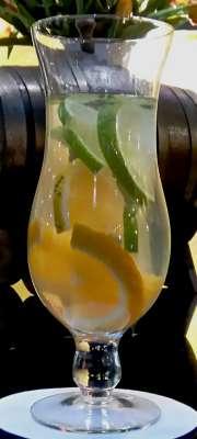 Água saborizada com frutas cítricas