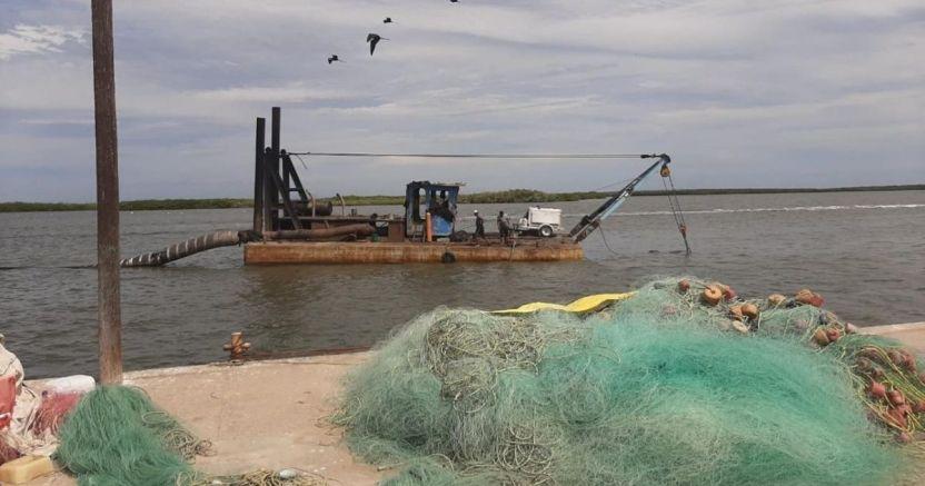 con buenas cifras cierran las capturas de camarxn en sinaloa crop1584295372207.jpg 673822677 - Con buenas cifras cierran las capturas de camarón en Sinaloa