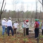 Yucatan tormentas - Fondo de Cambio Climático y Desastres está en ceros, dice el gobernador de Yucatán