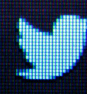 GettyImages 154605103 scaled - Video porno interrumpe audiencia del 'hacker' que pirateó cuentas de famosos en Twitter