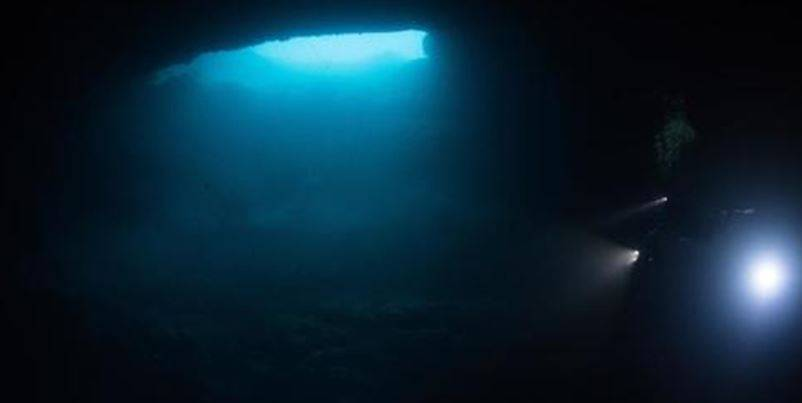 cenotes Q.Roo  - Descubren cinco cenotes de agua dulce en islas de Quintana Roo