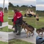perros de ataque - Fuerzas Armadas de EU rechazan el uso de imagen de Kaepernick para entrenar perros de ataque
