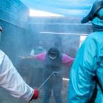 casos covid 19 mexico 6 septiembre - Muertes por covid-19 en México suman 67,558; positividad hila seis semanas a la baja