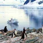 De quien es la Antartida - ¿De quién es la Antártida?