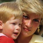 Diana Harry - El homenaje del príncipe Harry a su madre Diana de Gales en la web de Archewell