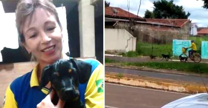 cartera perros  - Cartera le regala comida a perros callejeros mientras entrega paquetes en Brasil. Creó un vínculo