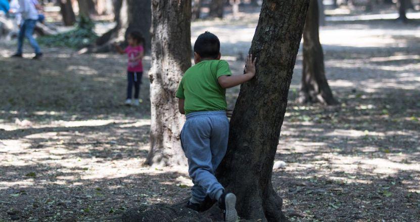 nincc83o - Niño de 8 años sube a un árbol en Puebla. Juega, resbala, cae y pierde la vida por el impacto