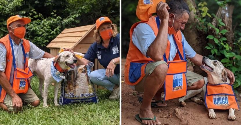 perro loteria vendedor regalos - Indio, el perrito vendedor de lotería, recibió regalos por su buen trabajo. Los merece todos