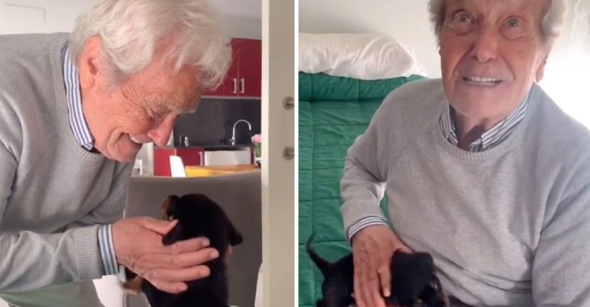 55 anciano perro ternura lagrimas cachorro tiktok - Abuelo de 91 años llora de alegría al recibir un cachorro. Adora a los animales, disfruta de dar amor