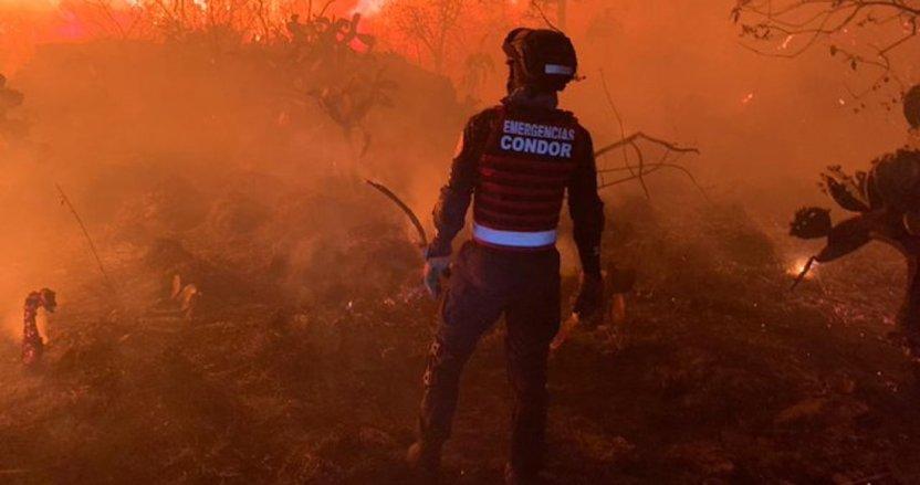 exyw7xsu4aaixw - FOTOS: Bomberos combaten un incendio en la colonia Fuentes del Pedregal, Alcaldía Tlalpan, CdMx