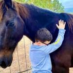 santuario animales especiales discapacidad - SSantuario une niños especiales con animales maltratados para apoyarse. Se dan fuerza mutuamente