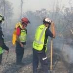 controlan incendio bosque de chapultepec cdmx.jpg 242310155 - Controlan incendio en el Bosque de Chapultepec, CDMX; 2.8 hectáreas afectadas