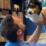 perrito nace sin patas - Perro que nació sin patas frontales le enseña a estudiantes sobre la aceptación. Aprenden de bondad
