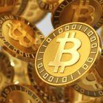Bitcoin - Los mejores memes de la caída de Bitcoin... no harán que suba, pero te reirás