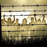 Acnur la lucha por los derechos humanos en el mundo entero - Acnur, la lucha por los derechos humanos en el mundo entero