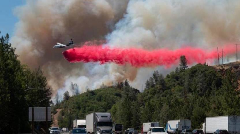ola calor canada  - Ola de calor en Canadá provoca la muerte de al menos 500 personas