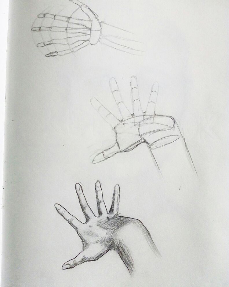 Hand bones and anatomy sketches