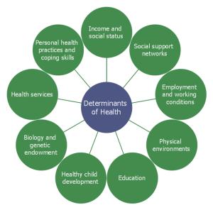 Social determinants of health   CircleSpoke Diagrams