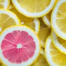Mach Limonade aus Zitronen
