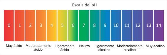 Ph Piscina Wikipedia