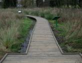 wolvey-board-walk-02