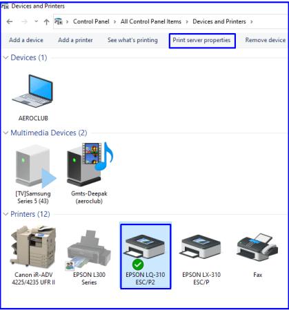 Print server properties Epson lq-310