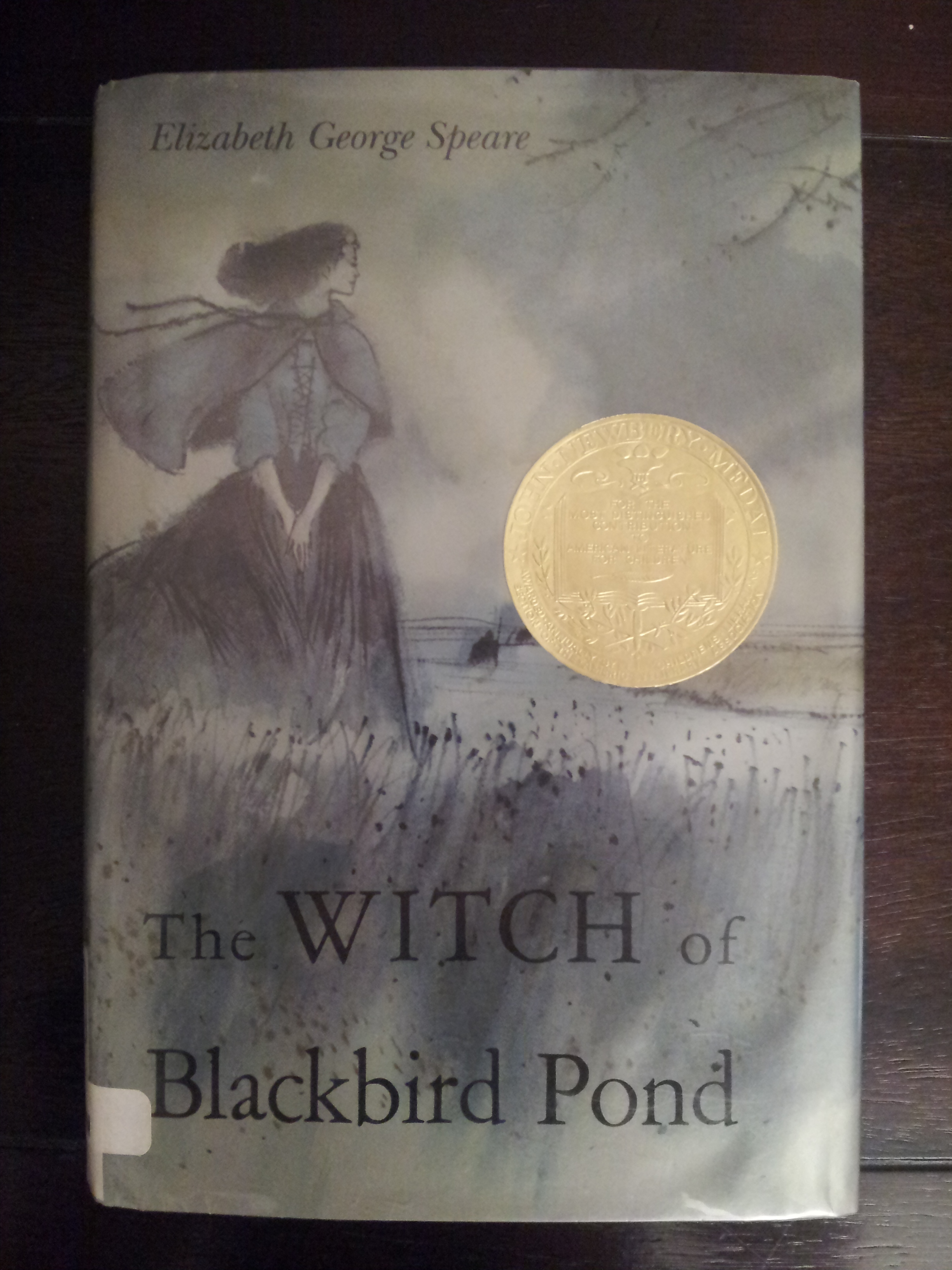 Quick Book Review The Witch Of Blackbird Pond By
