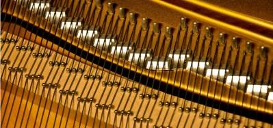 prévalet piano dijon - détail cordes slide 2