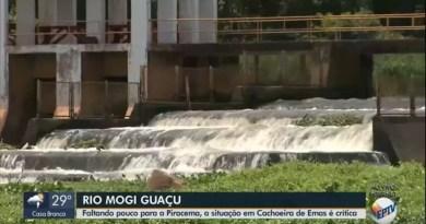 Rio Mogi Guaçu: apesar da seca, peixes tentam subir as escadas de Cachoeira de Emas. Veja as imagens