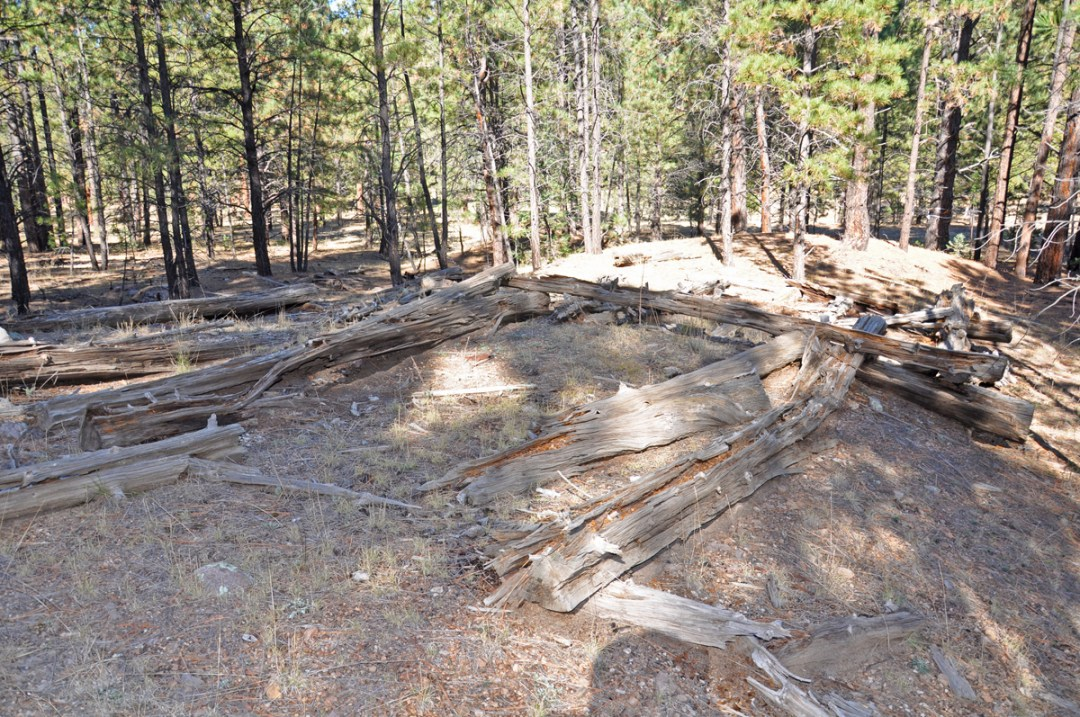 Image of Decaying Sawmill Foundations