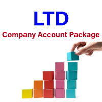 Company accounts packages