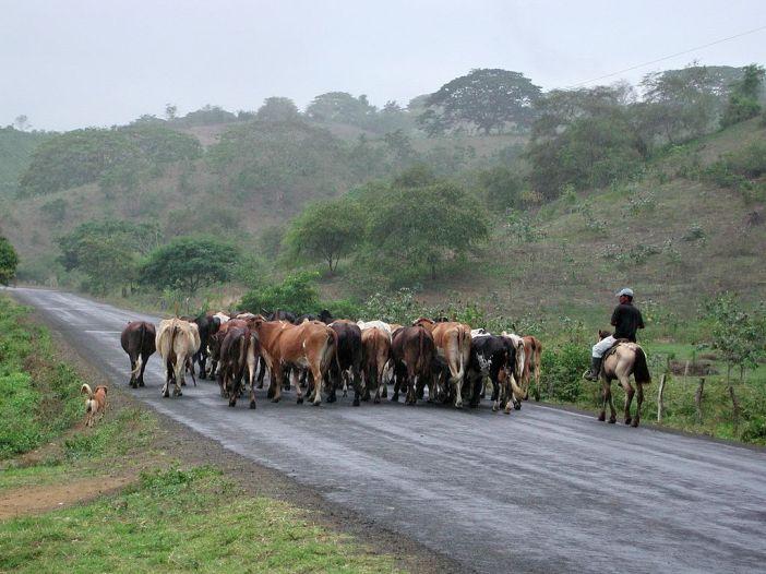 Ruta del sol - Ecuador