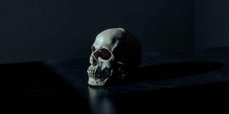 Fotografía de una calavera humana sobre fondo negro. Fotografía de Mathew MacQuarrie (Unsplash)