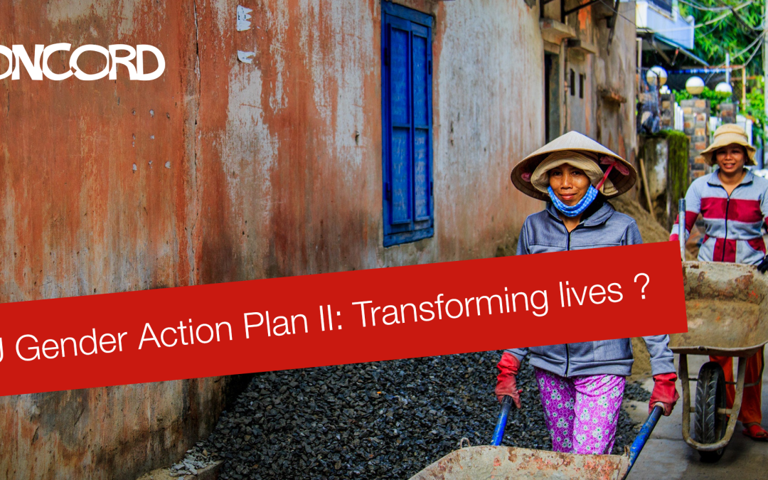 EU Gender Action Plan II: Transforming lives ? – New Report