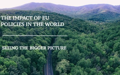 The impact of EU policies in the world. Seeing the bigger picture – one year on