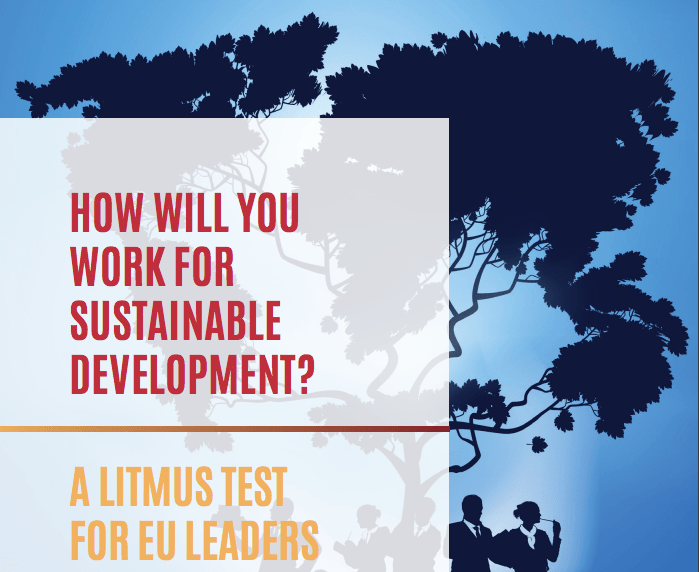 """How will you work for Sustainable Development?"" CONCORD's Litmus Test for EU leaders"