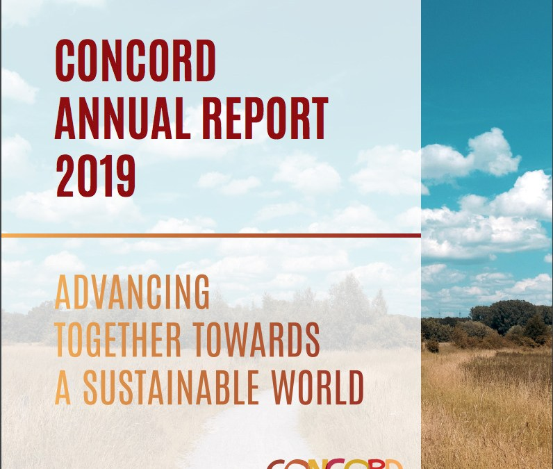 Annual Report 2019: Advancing together towards a sustainable world
