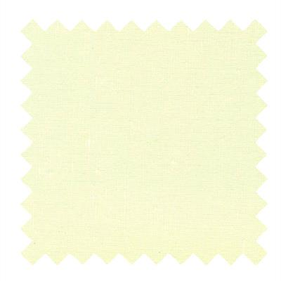 L518 -Tissue Shantung Fabric in Egg