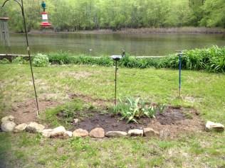 Newly created hummingbird garden.